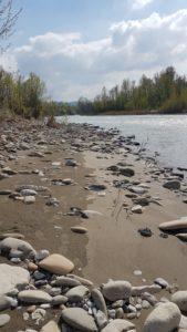 fiume Secchia